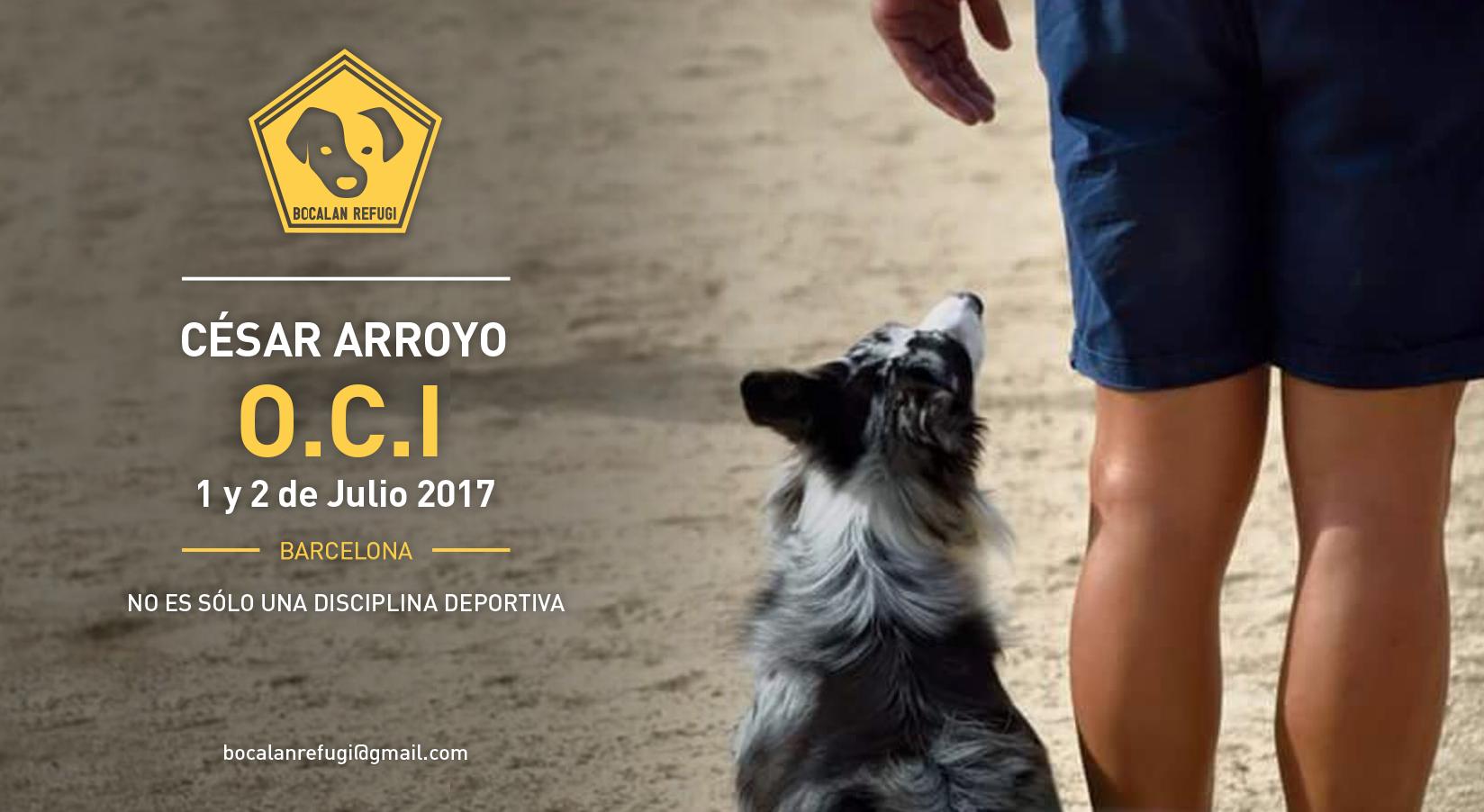Cartel-SeminarioOCI-CesarArroyo