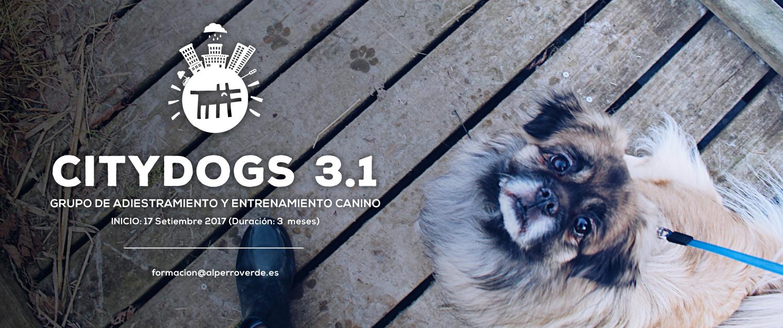CityDogs3.1-AlPerroVerde